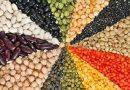 Con số may mắn trong giấc mơ thấy hạt đậu