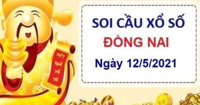 Soi cầu XSDN ngày 12/5/2021 – Soi cầu xổ số Đồng Nai hôm nay thứ 5